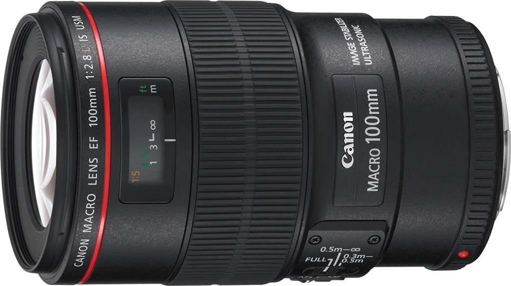 Canon 100 mm Macro Lens for Wedding Photography